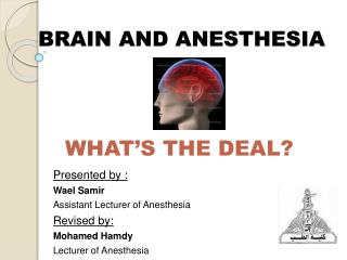 BRAIN AND ANESTHESIA