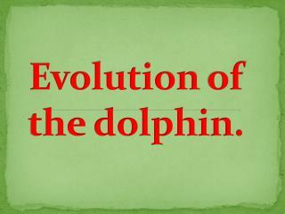 Evolution  of  the dolphin .
