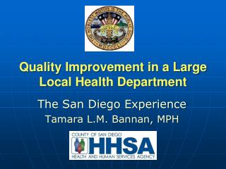 Quality Improvement in a Large Local Health Department