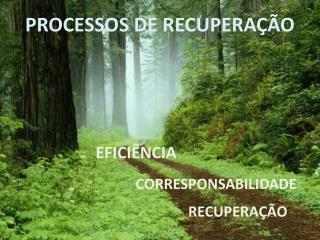 PROCESSOS DE RECUPERA  O