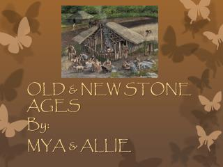 OLD & NEW STONE AGES