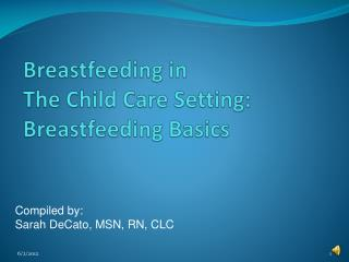Breastfeeding in  The Child Care Setting: Breastfeeding Basics