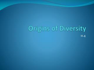 Origins of Diversity