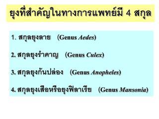 1. สกุลยุงลาย   ( Genus  Aedes ) 2.  สกุลยุงรำคาญ   ( Genus  Culex )