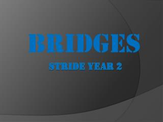 STRIDE Year 2