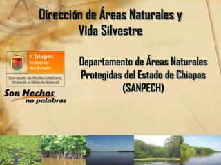 Dirección de Áreas Naturales y  Vida Silvestre