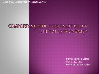 Comportamentul consumatorului- utilitatea economica