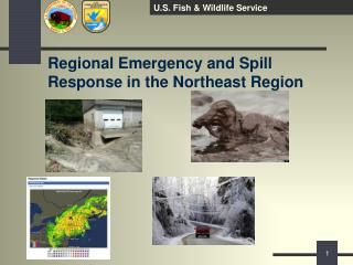 Regional Emergency and Spill Response in the Northeast Region