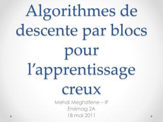 Algorithmes  de  descente  par blocs pour  l'apprentissage creux