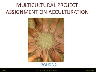 MULTICULTURAL PROJECT ASSIGNMENT ON ACCULTURATION