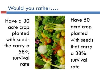 Would you rather….