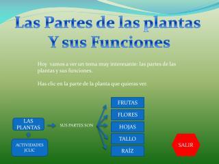 Las Partes de las plantas  Y sus Funciones