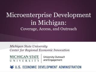 Microenterprise Development  in Michigan:  Coverage, Access, and Outreach