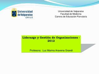 Liderazgo y Gestión de Organizaciones - 2012 Profesora:  Luz Marina Aravena Grandi