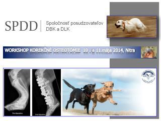 WORKSHOP KOREKČNÉ OSTEOTÓMIE  10 .  a  11.mája 2014, Nitra