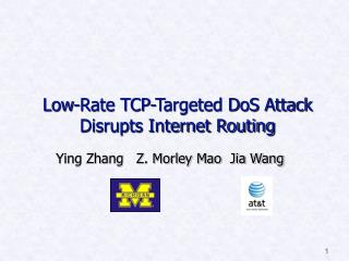 Low-Rate TCP-Targeted DoS Attack Disrupts Internet Routing
