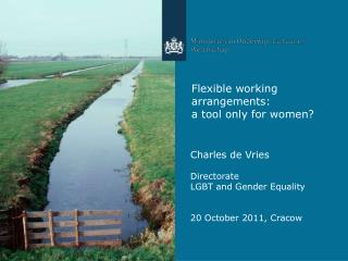 Flexible working arrangements:  a tool only for women?