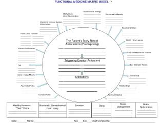 FUNCTIONAL MEDICINE MATRIX MODEL TM