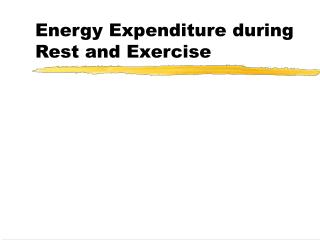 Energy Expenditure during Rest and Exercise
