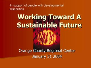 Working Toward A Sustainable Future