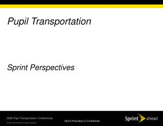Pupil Transportation Sprint Perspectives