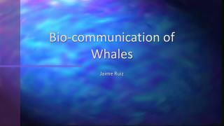 Bio-communication of Whales