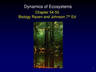 Dynamics of Ecosystems
