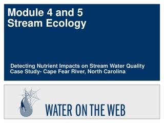 Module 4 and 5 Stream Ecology