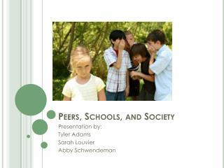 Peers, Schools, and Society