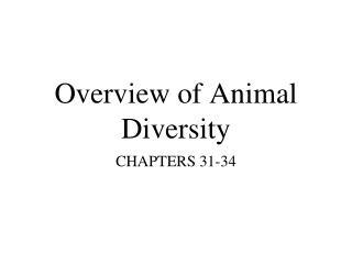 Overview of Animal Diversity