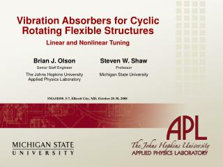 Vibration Absorbers for Cyclic Rotating Flexible Structures