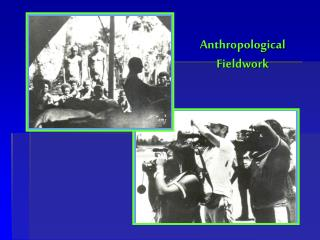 Anthropological  Fieldwork