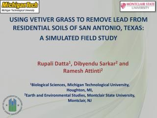 USING VETIVER GRASS TO REMOVE LEAD FROM RESIDENTIAL SOILS OF SAN ANTONIO, TEXAS: