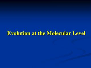Evolution at the Molecular Level