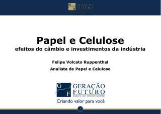Papel e Celulose  efeitos do câmbio e investimentos da indústria