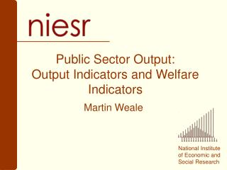 Public Sector Output: Output Indicators and Welfare Indicators