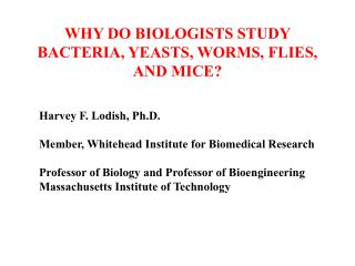 WHY DO BIOLOGISTS STUDY BACTERIA, YEASTS, WORMS, FLIES, AND MICE?