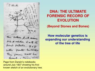DNA: THE ULTIMATE FORENSIC RECORD OF EVOLUTION (Beyond Stones and Bones)