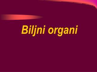 Biljni organi