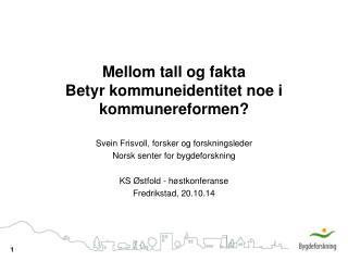 Mellom tall og fakta Betyr kommuneidentitet noe i kommunereformen?