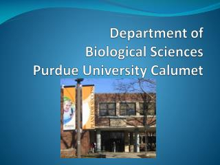 Department of  Biological Sciences  Purdue University Calumet