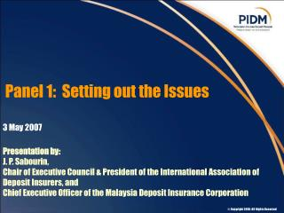 Panel 1:  Setting out the Issues