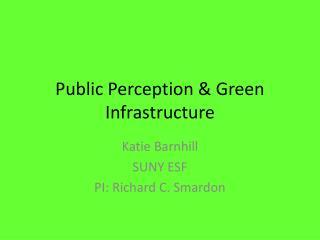 Public Perception & Green Infrastructure