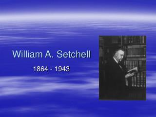 William A. Setchell