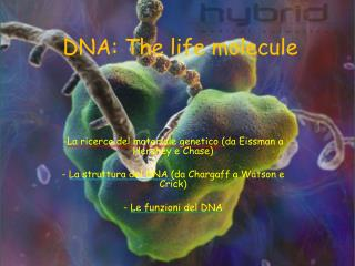 DNA: The life molecule