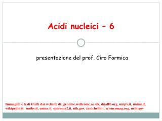 Acidi nucleici – 6