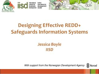 Designing Effective REDD+  Safeguards Information Systems Jessica Boyle IISD