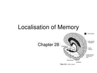 Localisation of Memory