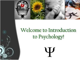 Welcome to Introduction to Psychology!