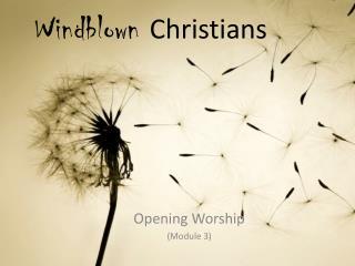 Windblown  Christians